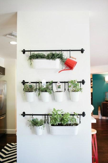 Cultiver des herbes aromatiques chez soi 12