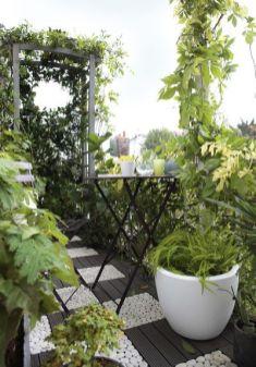 Jardin sur balcon 01