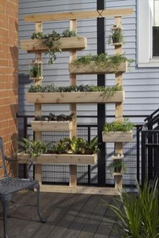 Nouvelle tendance, le jardin vertical 17