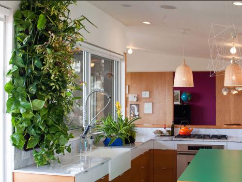 cuisine-jardin-vertical-idee