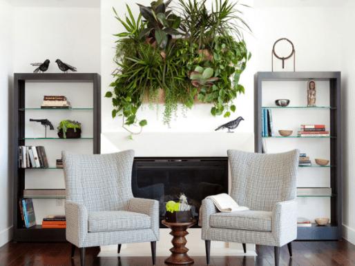 potager-vertical-interieur-idee-originale