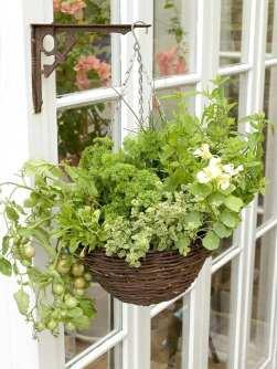 suspension-pot-de-fleurs-idee-jardin-interieur