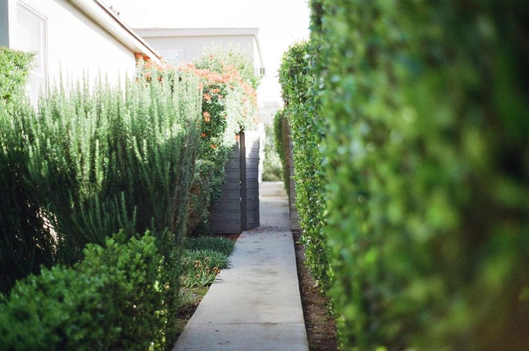 jardin décoration