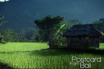 Bali filmé par Romain, une superbe carte postale