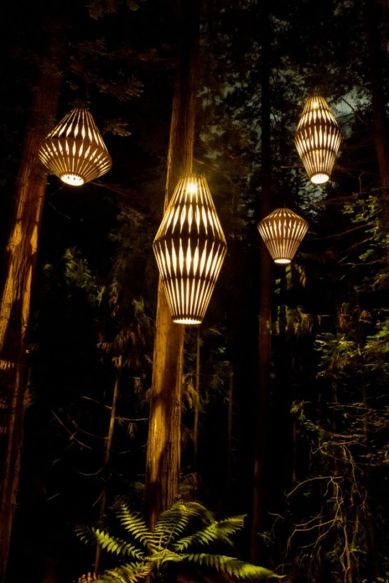 redwoods-nightlights-10-tt-width-620-height-930-lazyload-0-crop-1-bgcolor-000000-except_gif-1-qazy-1-nolayzr-1