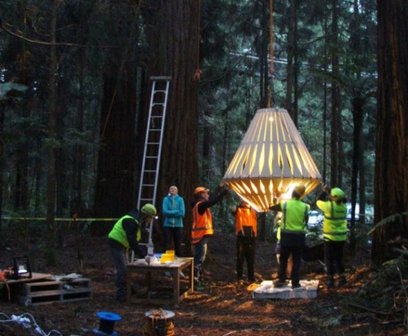 redwoods-nightlights-6-tt-width-620-height-511-lazyload-0-crop-1-bgcolor-000000-except_gif-1-qazy-1-nolayzr-1