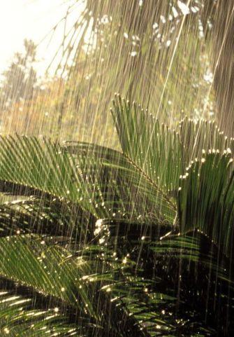 Comment protéger son logement face aux intempéries ?