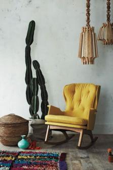 plantes-grasses-dintérieur-chaise-balançante-jaune-et-grand-cactus