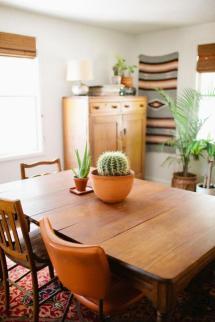 plantes-grasses-dintérieur-et-mobilier-en-bois-vintage