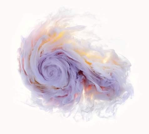 flowers-and-swirls-Mark-Mawson-14