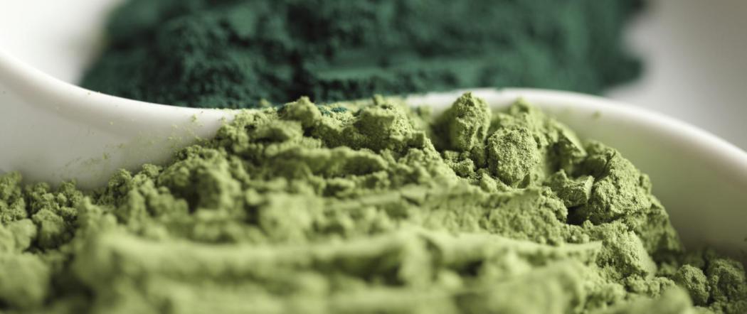 La spiruline, algue miracle – Pourquoi et comment l'utiliser ?