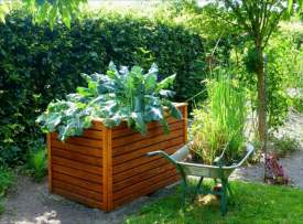 jardinage-debout-action-intelligente