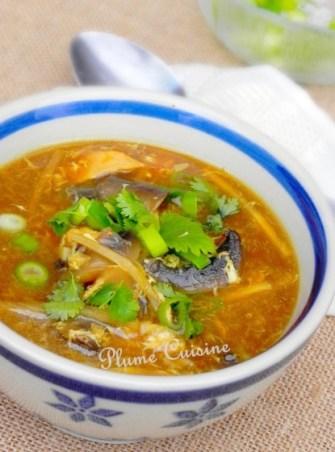 La soupe sichuan au poulet