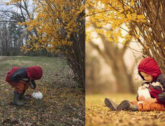 Amateur Vs. Pro: Voici la différence lorsque devenez photographe professionnel