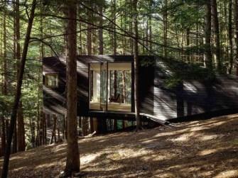 Half-Tree House, cabane dans la forêt du Comté de Sullivan, New York par Jacobschang
