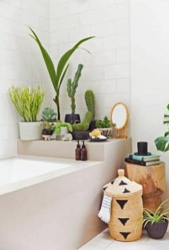 des-plantes-vertes-disposees-sur-la-baignoire