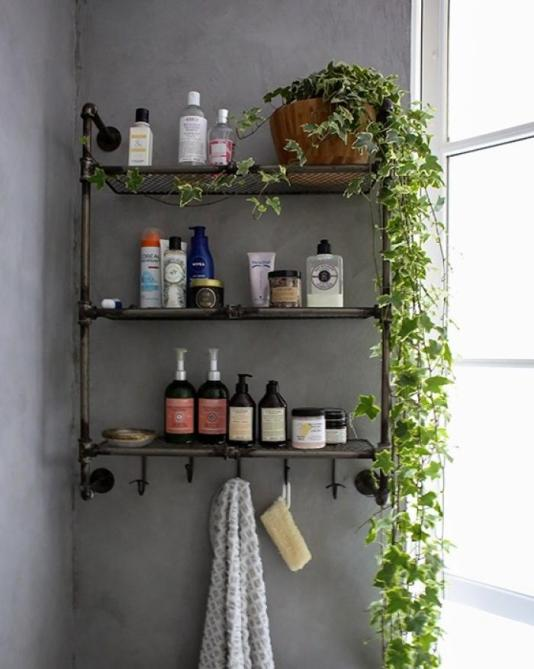 des-plantes-vertes-sur-l-etagere-de-salle