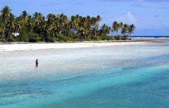 L'océan se meurt : les espèces aquatiques en danger