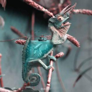 Julien-Tabet-animaux-surrealistes_3