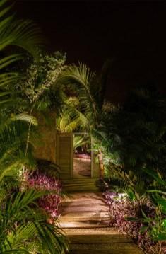 verdure-jardin-outdoor-palmiers