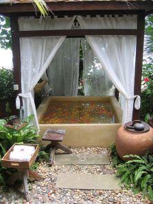 Une baignoire en extérieur (13)