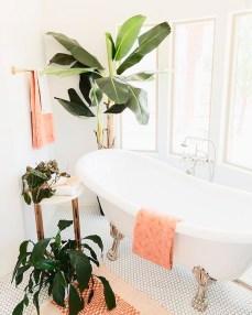 Des plantes dans votre salle de bain (2)
