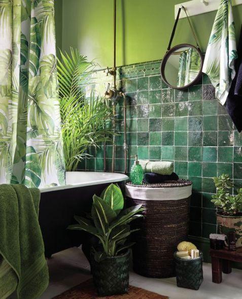 Des plantes dans votre salle de bain (5)