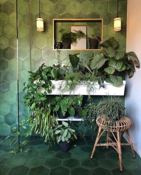 Des plantes dans votre salle de bain (6)
