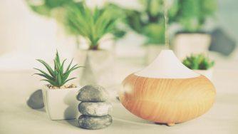 Les huiles essentielles qui permettent d'assainir l'air de votre maison