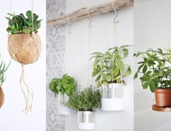 Plantes suspendues : 16 inspirations pour un coin nature