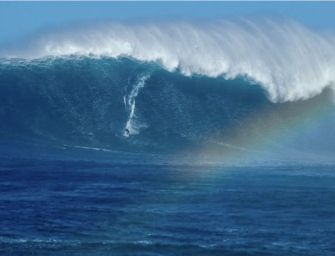 Hawaii: une houle gigantesque à Jaws !