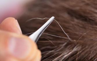 Est-ce que le fait d'arracher les cheveux blancs entraîne davantage de cheveux blancs ?