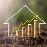 Keeping a Balanced Portfolio and Avoiding Investment Pitfalls