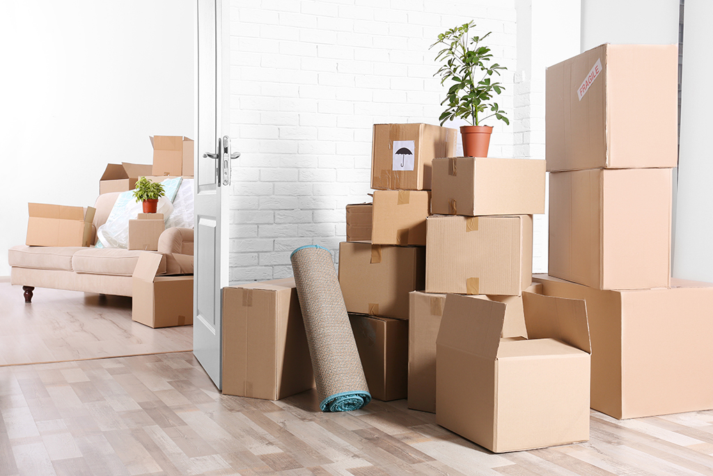 Where to Find Moving Boxes While Quarantined