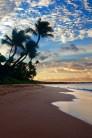 Moving-to-Hawaii-Maui-Tai