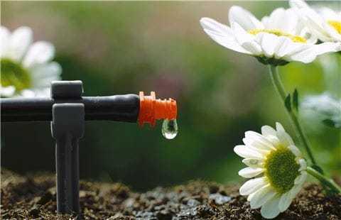 Micro drip systemen