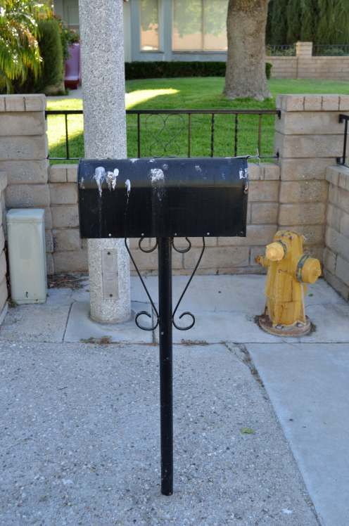 Birds seem to have commented on this mailbox ... and no other.
