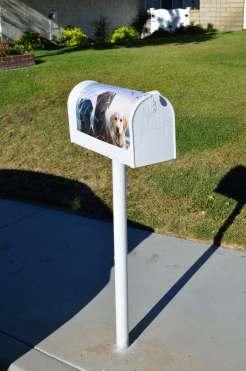 Mailbox 55