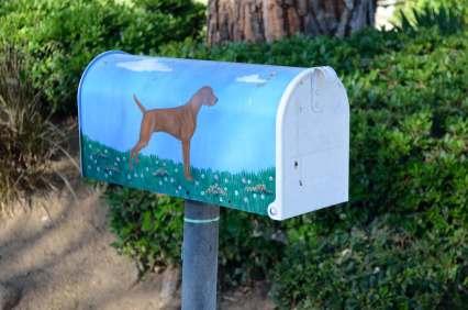 Mailbox 67