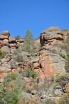Pinnacles 41