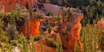 From the Bryce Canyon National Park Facebook page.