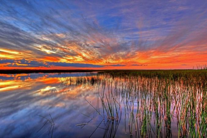 Tweeted by US Department of the Interior. Sometimes there are no words to describe America's public lands. This photo @EvergladesNPS proves it. #Florida pic.twitter.com/3l7fnrcfsG