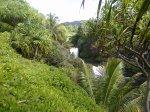 Haleakala NP 11