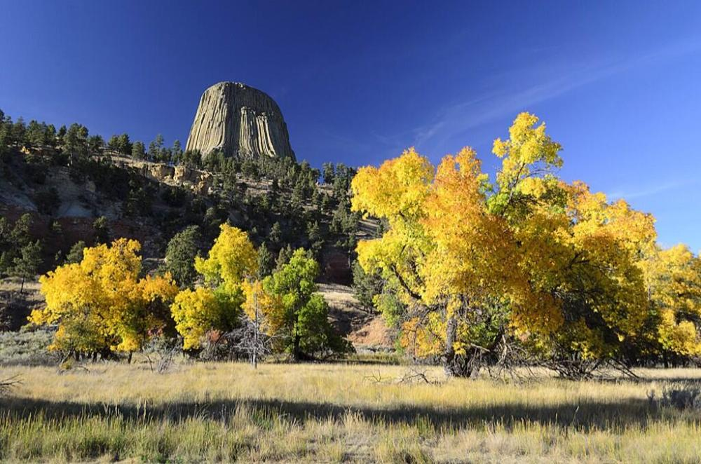 Devils Tower in Autumn. Tweeted by the Department of the Interior, 10/24/13.