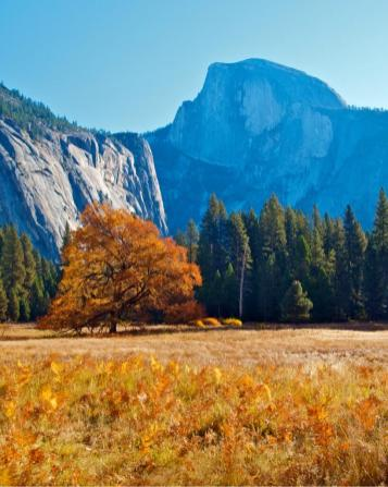 Yosemite valley in the fall. Tweeted by the US Department of the Interior, 10/23/13.