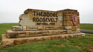 Theodore Roosevelt NP 00