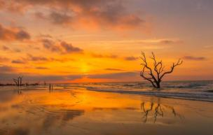 The rising sun over Cape Romain National Wildlife Reserve. Tweeted by the US Department of the Interior, 7/30/14.