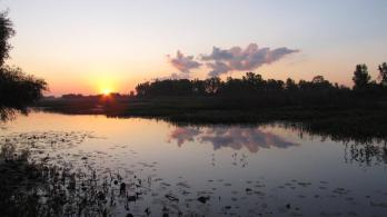 Sunrise comes to Ohio's Ottawa National Wildlife Refuge. Tweeted by the US Department of the Interior 9/20/14.