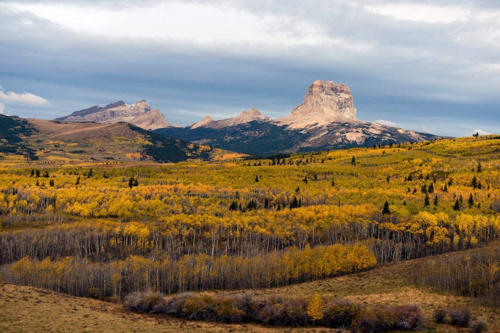 Chief Mountain (also named Ninaistako) in Glacier National Park stands tall above the golden aspen forest below. A spectacular monolith towering above the prairie along the eastern side of Glacier National Park, Chief Mountain can be seen for more than a hundred miles away. Posted on Tumblr by the US Department of the Interior, 10/9/14.