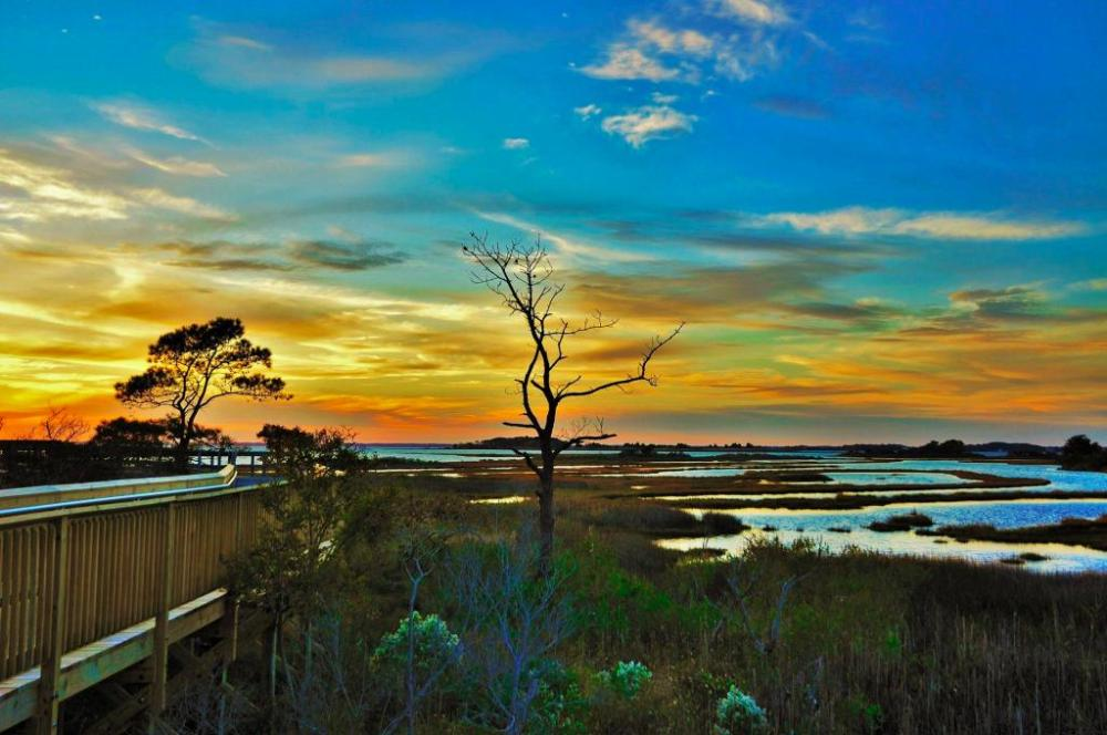 The gorgeous Assateague National Seashore. Photo by Bob Ferralli. Posted on Tumblr by the US Department of the Interior, 2/24/15.